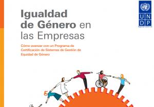 Manual_Igualdad_de_Genero_en_las_empresas.pdf